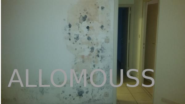moisissures maison luastuce gniale pour enlever la moisissure des murs sans javel with. Black Bedroom Furniture Sets. Home Design Ideas